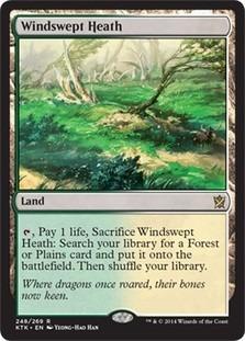 cartas magic windswept heath lista premiun yawg's
