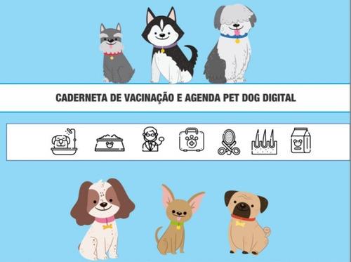 carteira de vacinação de cachorro personalizada