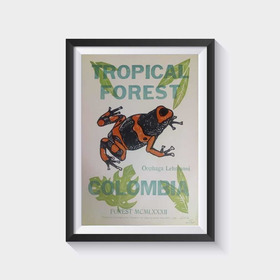 Cartel Tipográfico Rana Venenosa Colombia. Poster