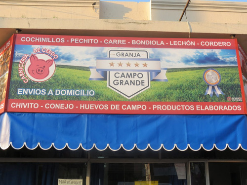 carteles - plotters - banners - corporeos - domes