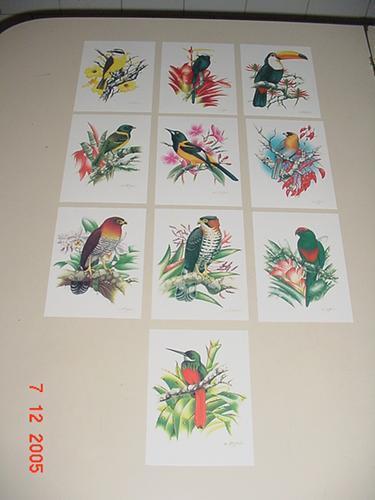 cartões postais com