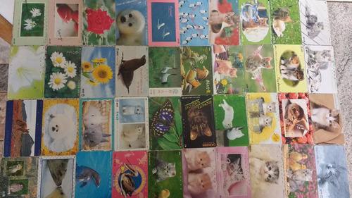 cartões telefônicos coleção