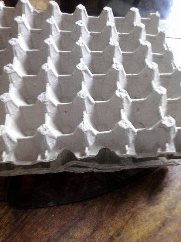 cartones de huevos usados de 30 unidades