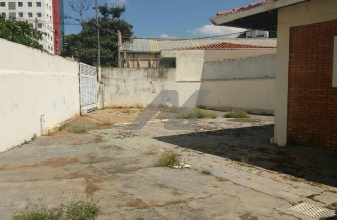 casa á venda e para aluguel em jardim chapadão - ca004041