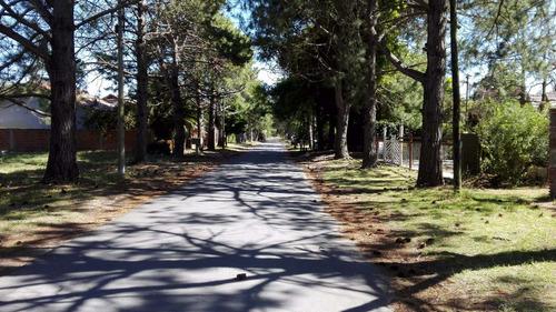 casa con enorme parque con pinar - mejor barrio san bernardo
