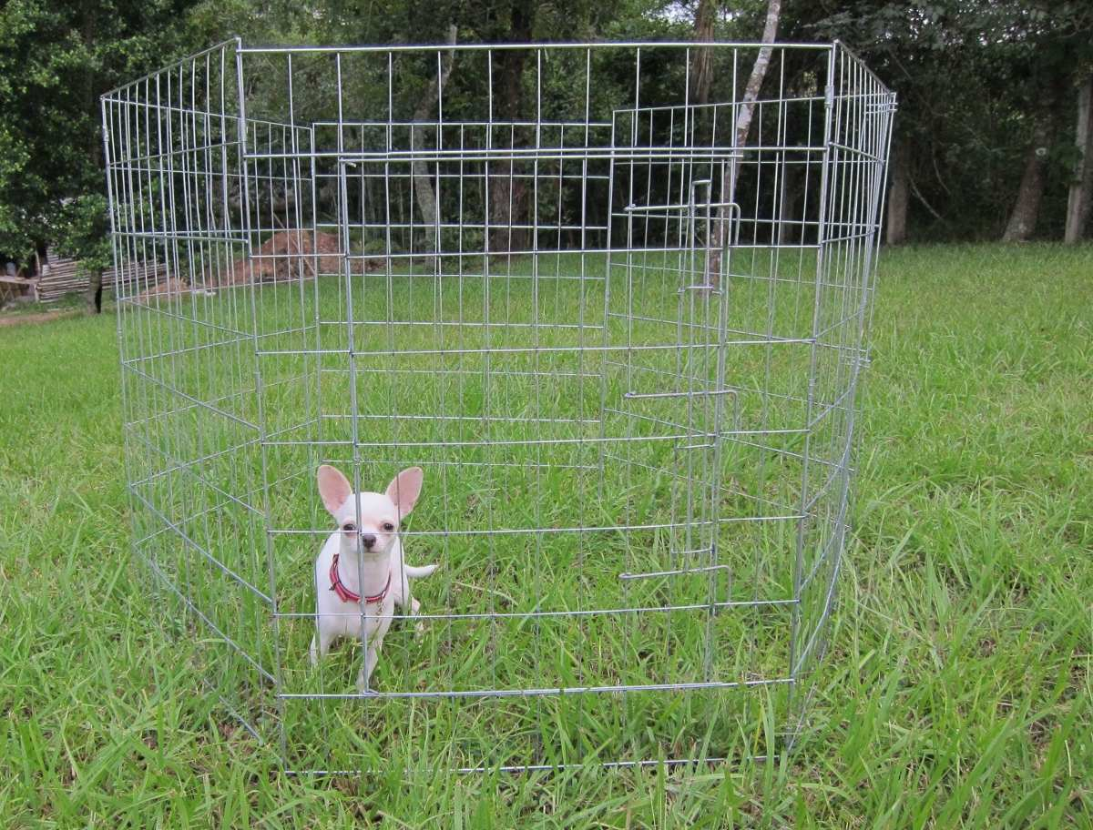 Casa corral reja para perro 7 paneles 60x80cm altura for Construir piscina para perros