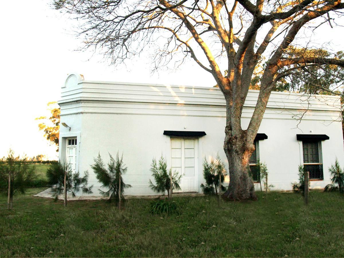casa de campo con 15 hectareas de plantaciones de olivos