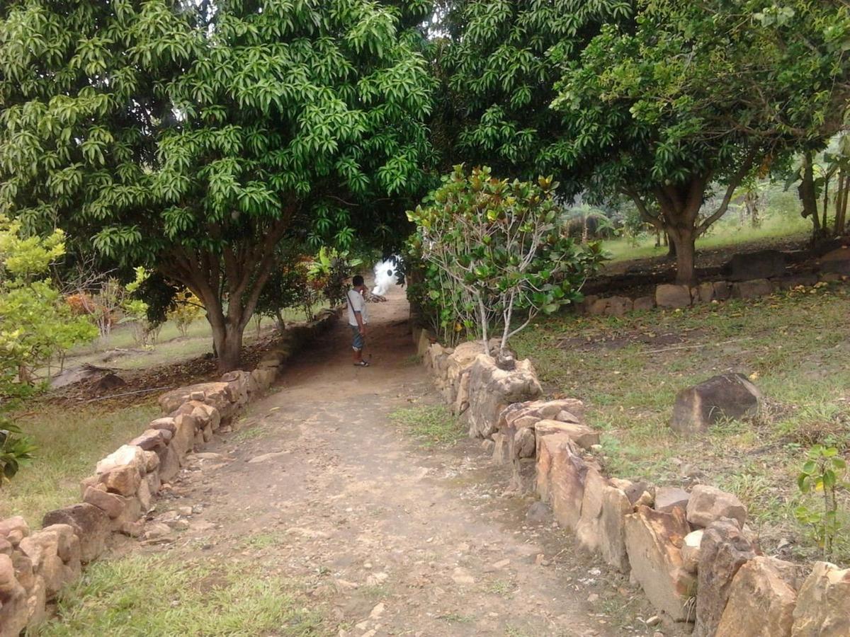 casa de campo, con algunos arboles frutales
