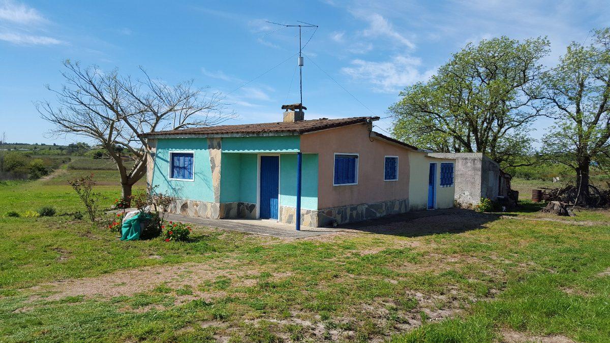 casa de campo en 4 hectareas  a 400 mtr de ruta 36 .