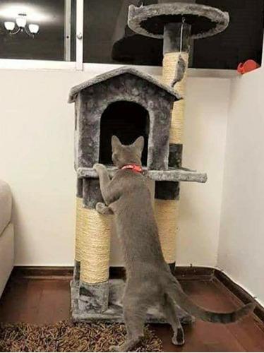 casa de gato rascador 3 niveles