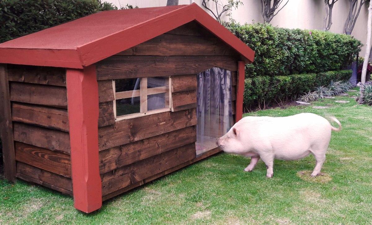 Casa de madera para perro extra grande dogo 3 - Casa de perro grande ...