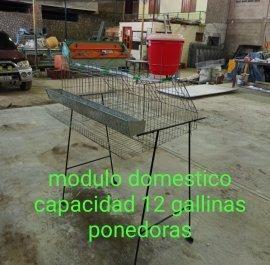 casa domestica para gallinas ponedoras capacidad 12 aves