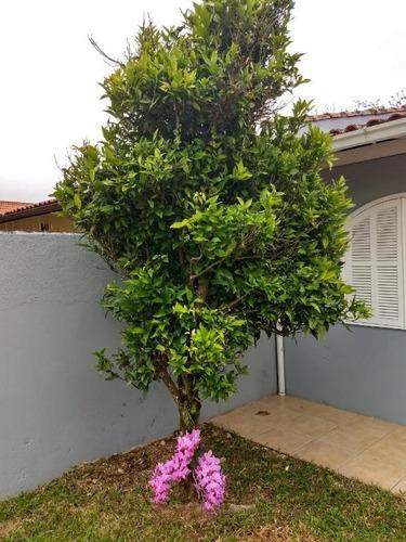 casa em parque são jorge, florianópolis/sc de 0m² 3 quartos à venda por r$ 960.000,00 - ca182089