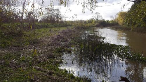 casa en el delta con 22 hectáreas y producción de nuez pecan