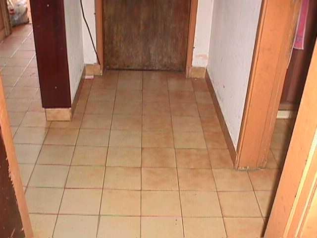 casa en el palomar  al frente de 3 ambientes mas depto de 2 ambientes al fondo f: 4079