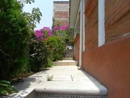 casa en el rosal, palmera del desierto