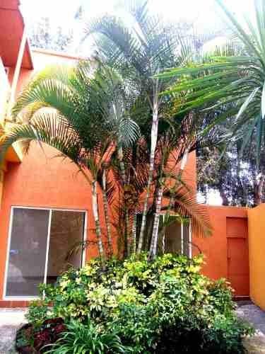 casa en fraccionamiento en lomas de tetela / cuernavaca - grb-716-fr#