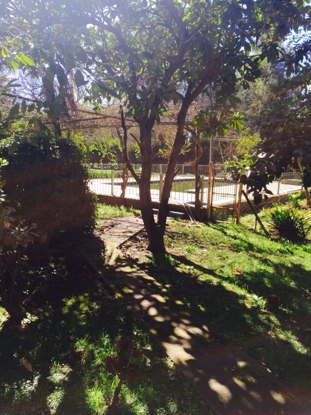 casa  en francisco álvarez gorriti 1800 mts/piscina/quinta