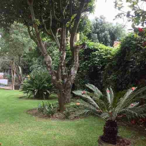 casa en privada en ahuatepec / cuernavaca - gsi-456-cp