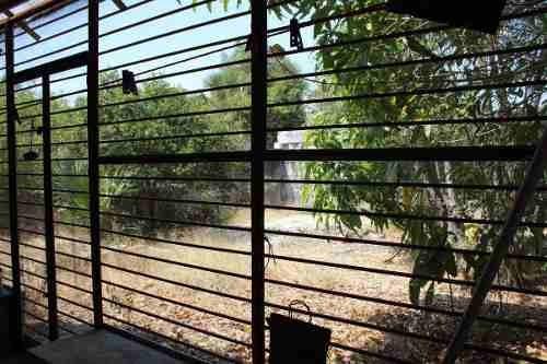 casa en venta en centro histórico en mérida, yucatán