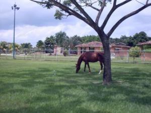 casa en venta  en safari country club valencia19-20279 valgo
