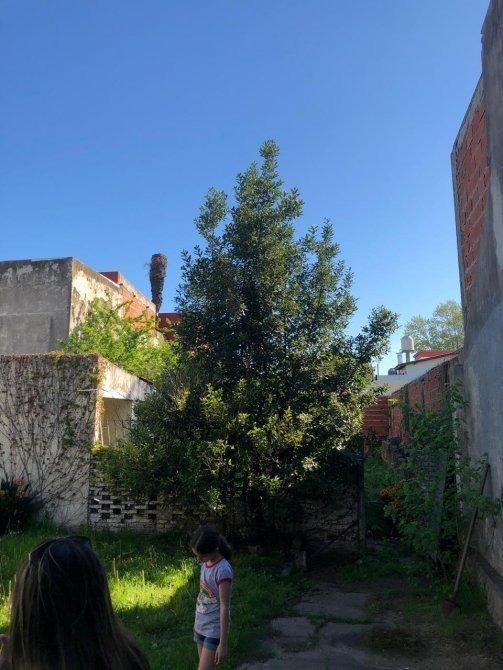 casa en venta temperley