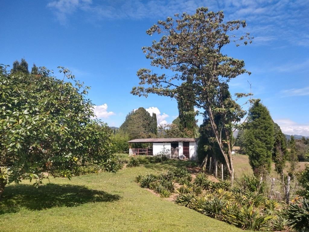 casa finca en venta guarne antioquia or840