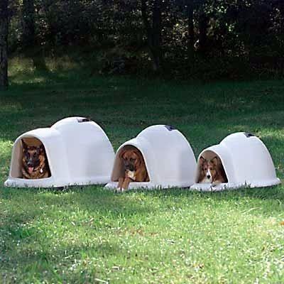 casa igloo perro dogloo indigo extra grande petmate 128cms