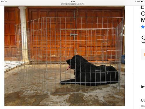 casa jaula corral para perro grande y gigante 1 metro altura
