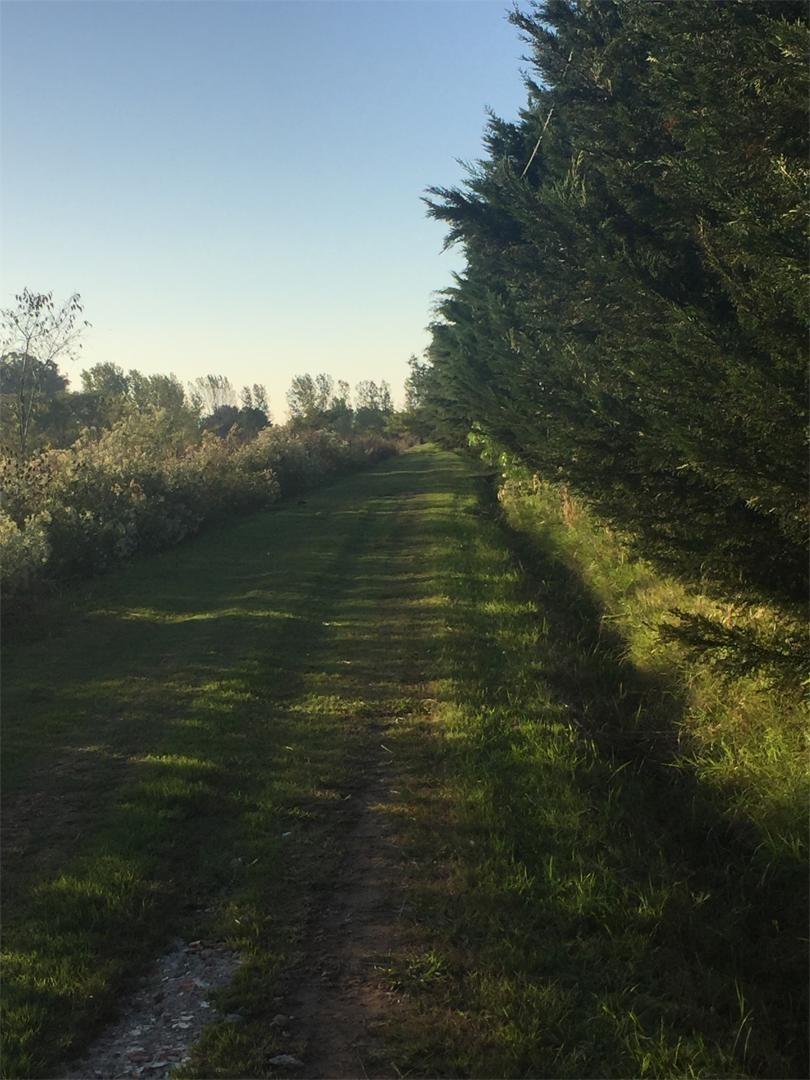 casa  mercedes ¨ ruta 41 km 237
