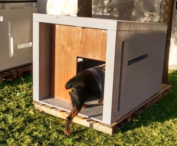 Casa minimalista para mascota grande 14 en for Casa minimalista grande
