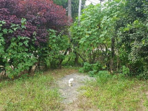 casa no jardim coronel, em itanhaém - ref 3831