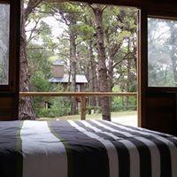 casa pai hué nueva en bosque de pinos con exelente entorno