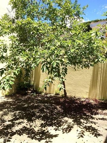 casa para aluguel, 3 dormitórios, jardim das acácias - são paulo - 3169