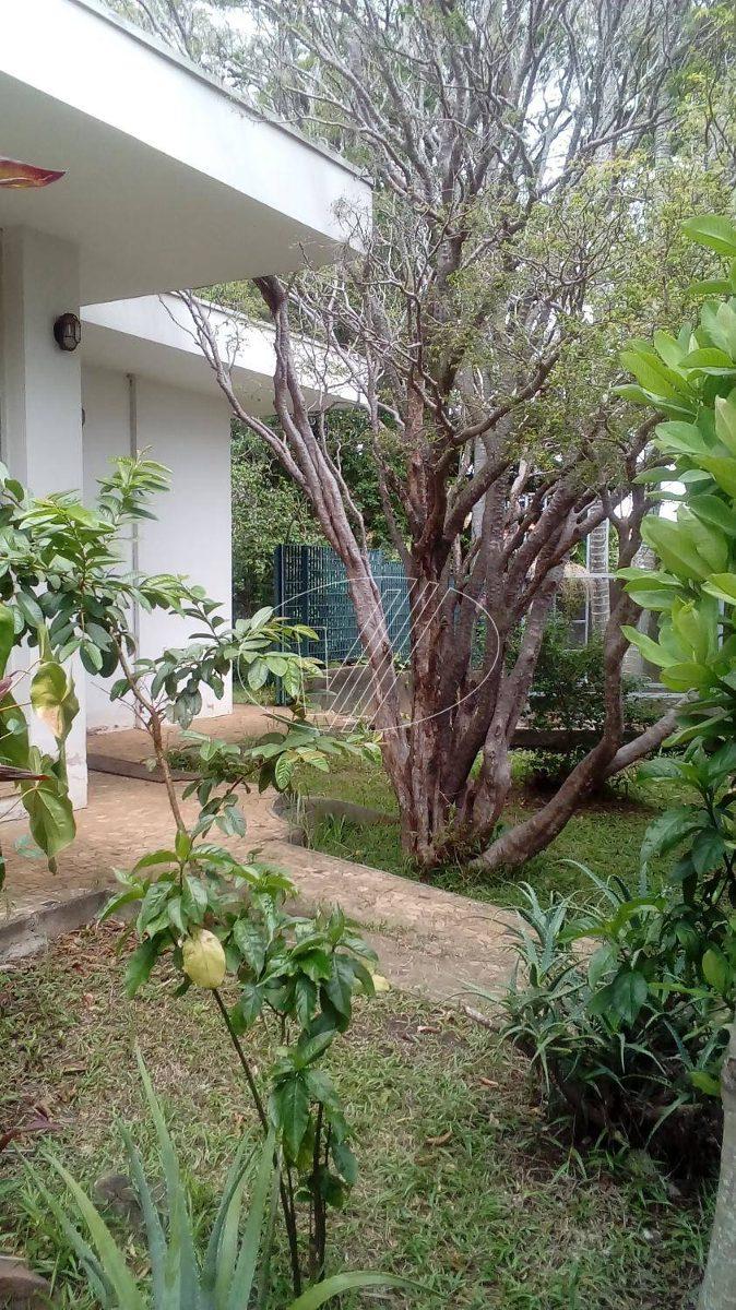 casa para aluguel em nova campinas - ca009309