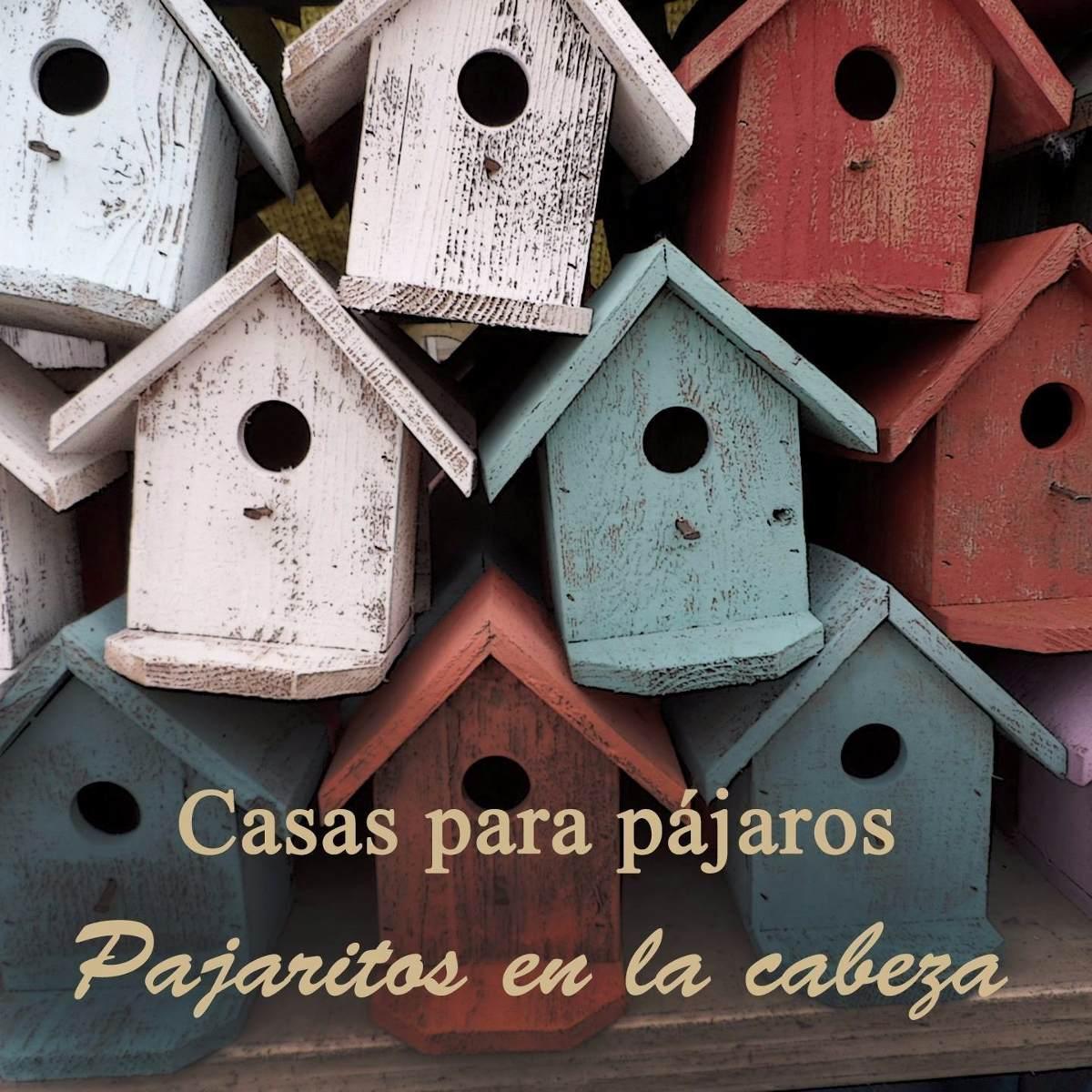 casa para pájaros con suculentas madera pino armada pintada. Cargando zoom. 65c74f50ea5