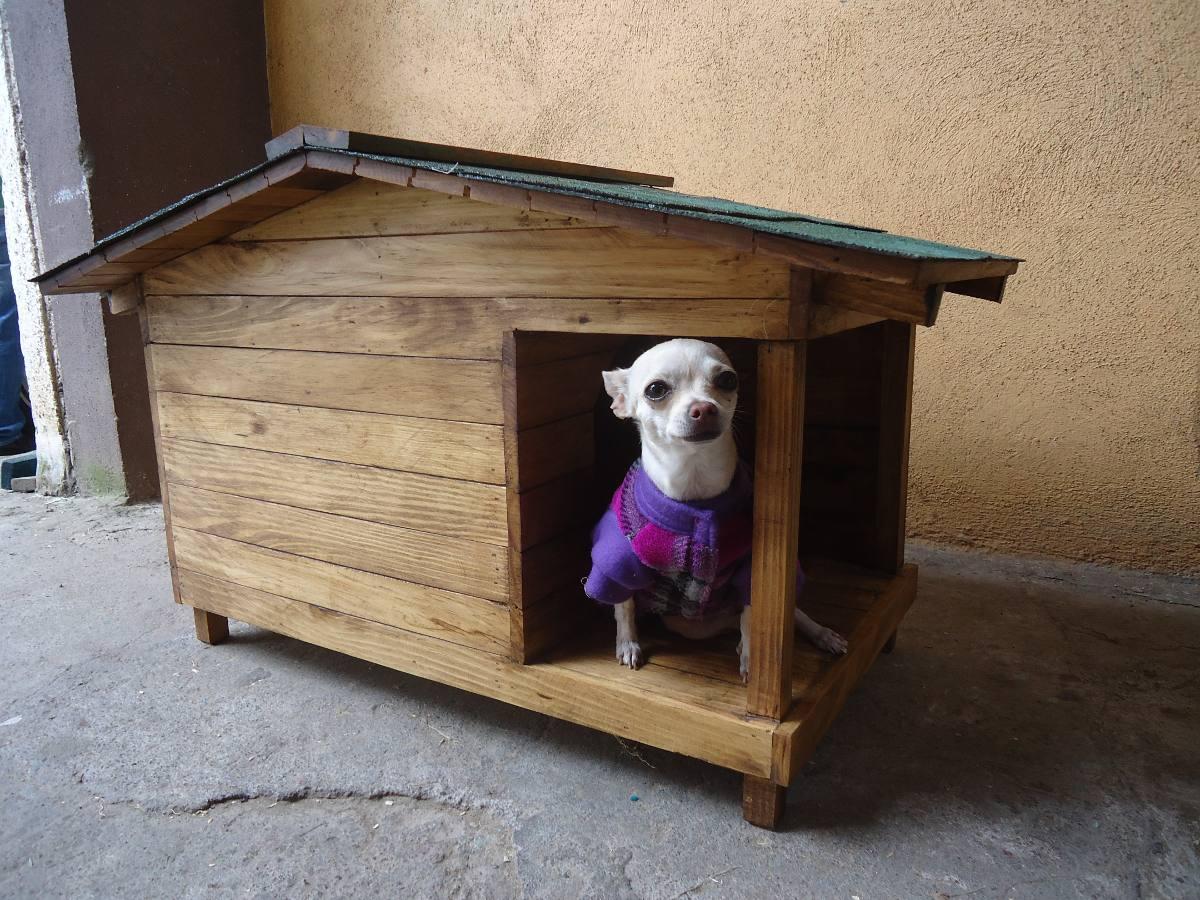 Casa para perro con terraza lateral no 1 1 en - Mascotas en casa ...