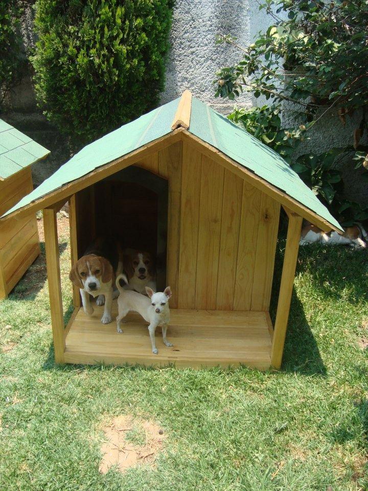 Casa para perro de madera residencial con terraza d lujo for Casas para perros
