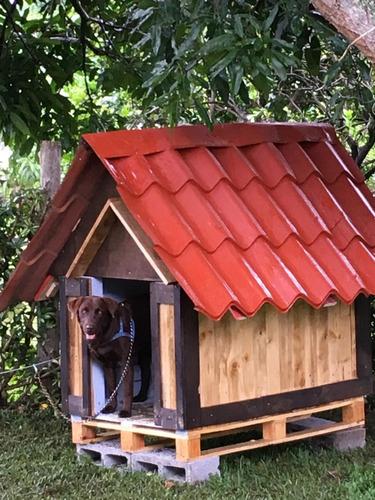 casa para perro estilo rustico / modelo jumbo
