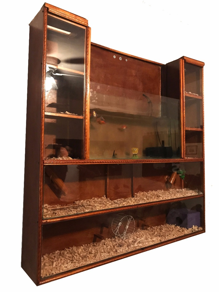 Casa Para Reptiles Peceras Hamster Hurones B2 249900 En