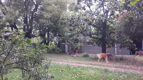 casa quinta en longchamps