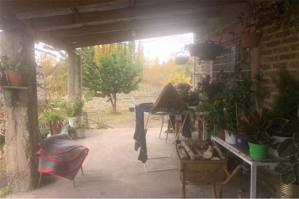 casa quinta en venta china muerta plottier