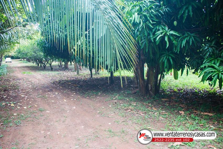 casa quinta en venta en masaya