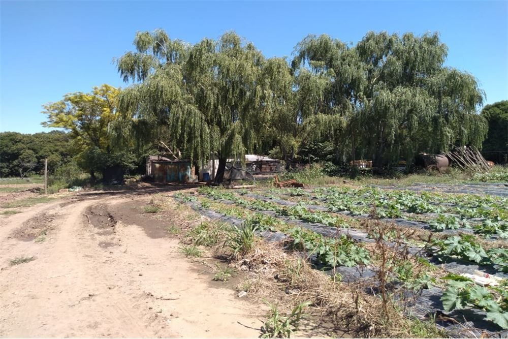 casa quinta en villa esquiu terreno de 55000 m2