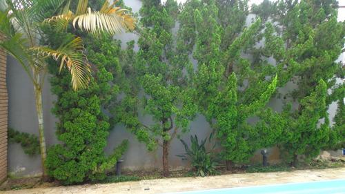 casa residencial com piscina .ref. 167 e 274 cris
