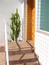 casa  residencial para venda e locação, vila formosa, são paulo. - codigo: ca0232 - ca0232