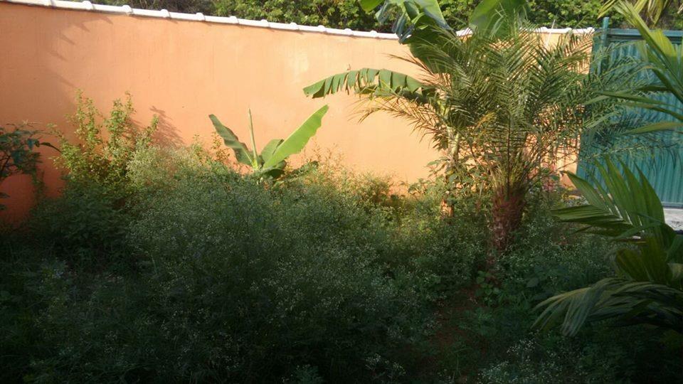 casa residencial à venda, jardim são jorge, nova odessa - ca0376. - ca0376
