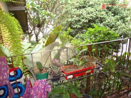 casa residencial à venda, vila guarani(zona sul), são paulo - ca0011. - ca0011