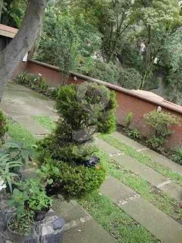 casa sola en bosques de las lomas, bosque de ombues