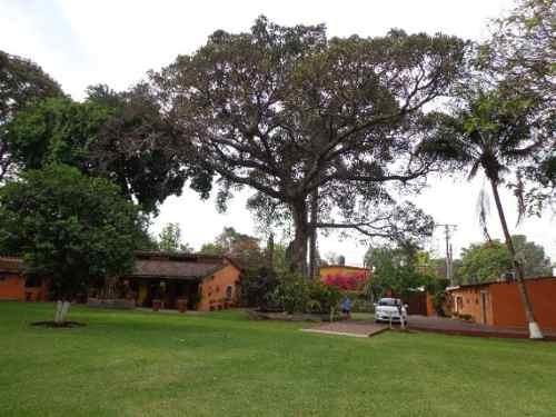 casa sola en centro / xochitepec - ims-1179-cs